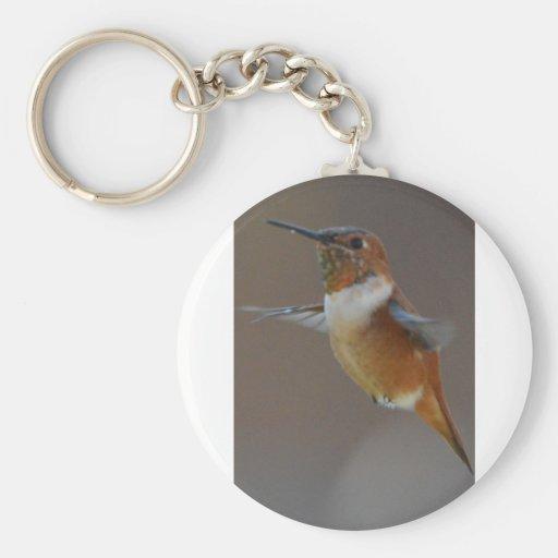 Bird American Rufus Hummingbird Nature Key Chains