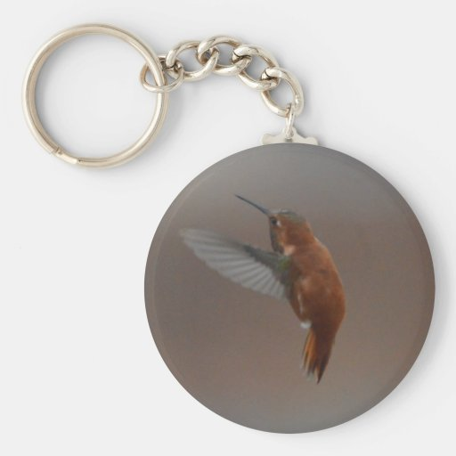 Bird American Rufus Hummingbird Nature Keychain