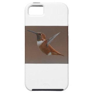 Bird American Rufus Hummingbird Nature Tough iPhone 5 Case
