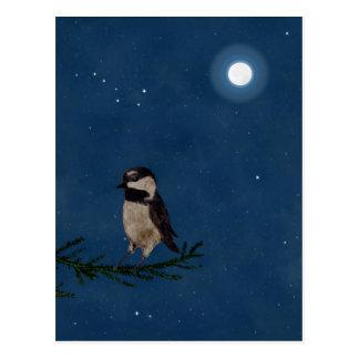 Bird Art, at Night with Moon, Big Dipper, Stars Postcard