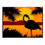 Bird at Sunset postcard