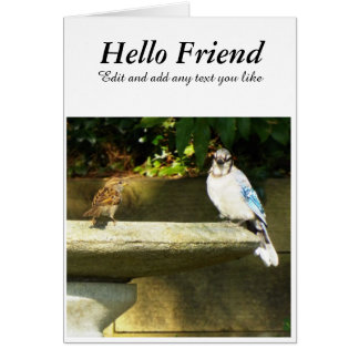 Bird bath birds card