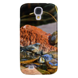 bird bath HTC vivid cases