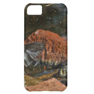 bird bath iPhone 5C cover