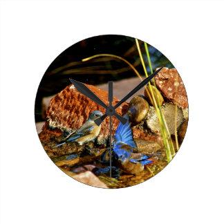 bird bath round wall clocks