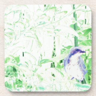 Bird Bath Coasters