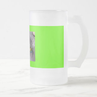 bird bath Dec.08 002, mom Frosted Glass Mug