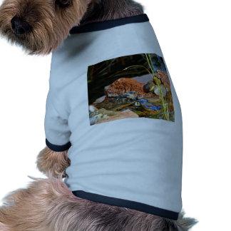 bird bath doggie tshirt