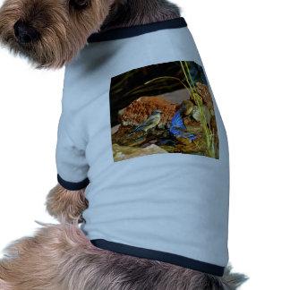 bird bath pet tee shirt