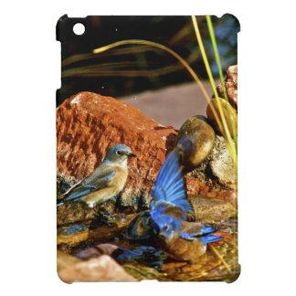 bird bath iPad mini cover