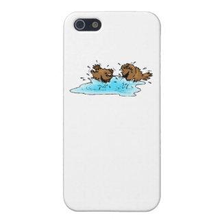 Bird Bath iPhone 5 Cover