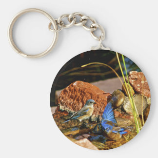bird bath key chain