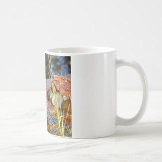 bird bath mugs