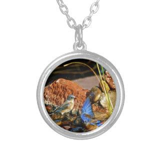 bird bath custom necklace