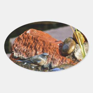 bird bath oval sticker
