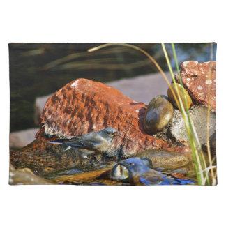 bird bath place mats