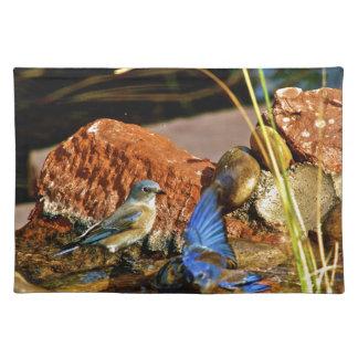 bird bath placemat
