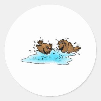 Bird Bath Stickers