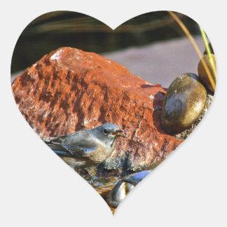 bird bath heart sticker