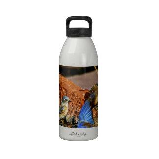 bird bath reusable water bottle