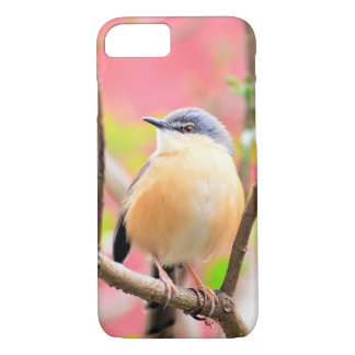 Bird Beautiful Colorful Nature Scenery iPhone 7 Case