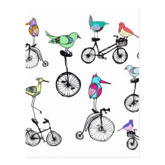 Bird Bike Illustration Postcard