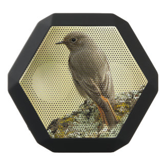bird black boombot rex bluetooth speaker