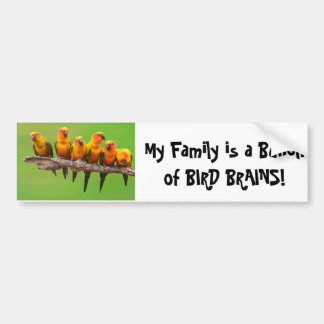 Bird Brains Bumper Sticker