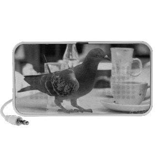 Bird Cafe Notebook Speaker