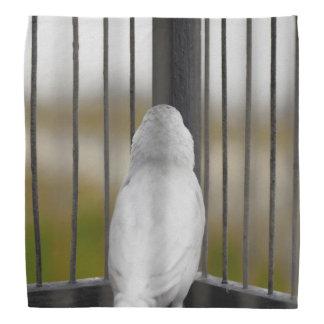 Bird, Cage, bars Bandana
