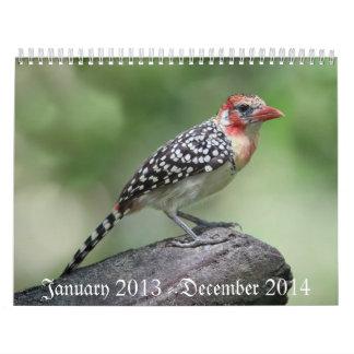 Bird Calaender 2013-2014 Calendar
