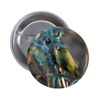Bird camouflaged in the tree 6 cm round badge