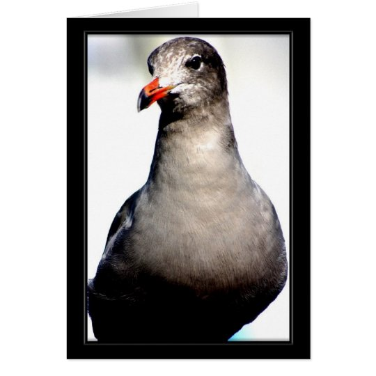 Bird Card III