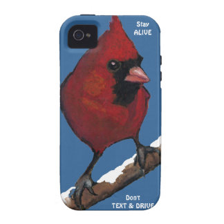 Bird: Cardinal: Don't Text & Drive: Stay Alive Vibe iPhone 4 Covers