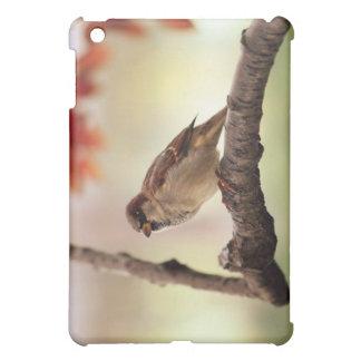 Bird Case iPad Mini Cases