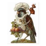 Bird Chef Postcard