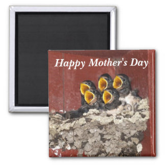 Bird Choir Sings Happy Mother's Day to Mom Square Magnet
