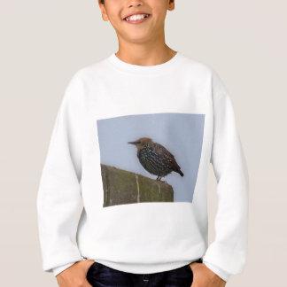 Bird Culture 2 Sweatshirt