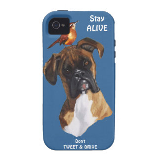 Bird DOG BOXER Don t Tweet Drive Stay Alive Vibe iPhone 4 Case