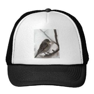 Bird drawing cap