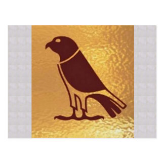 BIRD Eagle wild zoo Artistic Giveaway Novelty Postcard