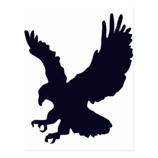 Bird, Eagle- Wildlife Postcard