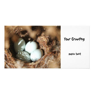 Bird Eggs Nest Personalized Photo Card