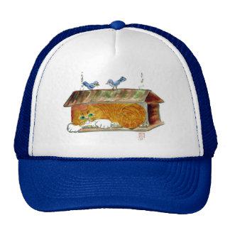 Bird Feeder and Orange Tiger Cat Mesh Hats