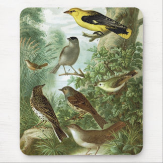 Bird group 2 mouse pad