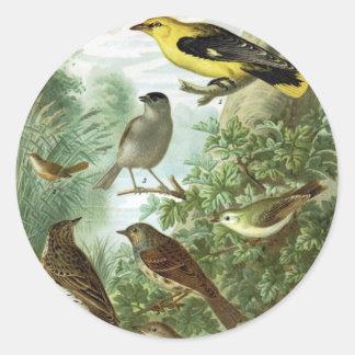 Bird group 2 round sticker