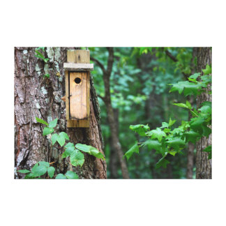 Bird House nesting box Canvas Prints