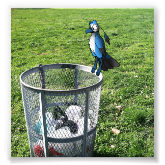 Bird Hybrid on Trash Can Photo Print