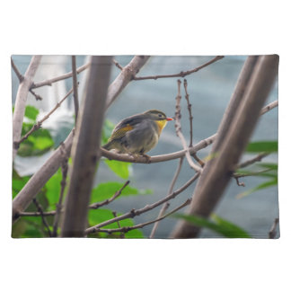 Bird in a tree placemat