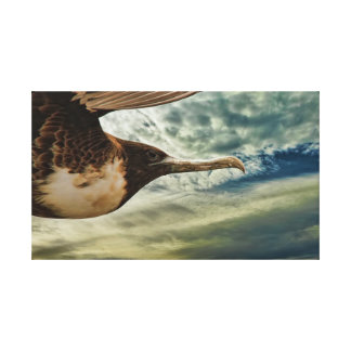 Bird in flight stretched canvas prints